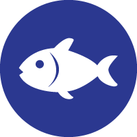 Pescados blancos y rojos