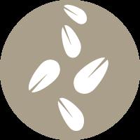 Cereales con sésamo
